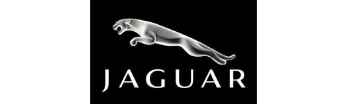 Capote Jaguar